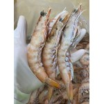 King Prawns whole 15/20 (large) 5kg
